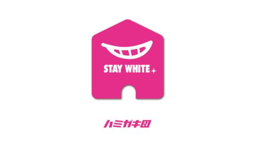 STAY WHITE プロジェクト始動!